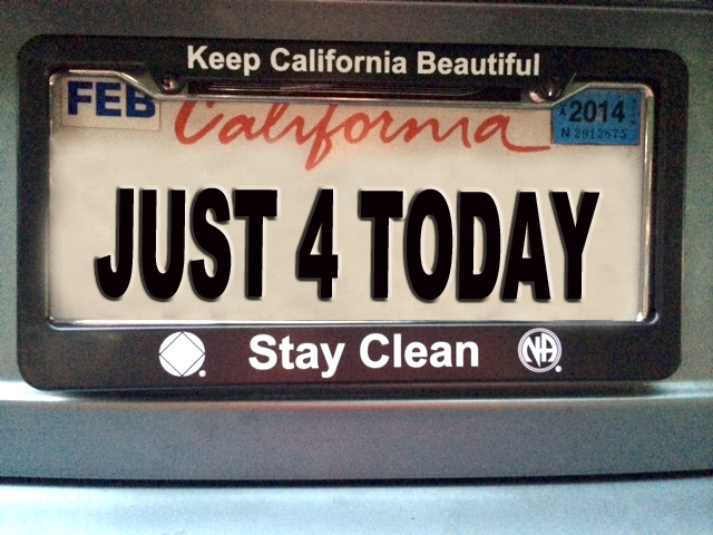 Stay Clean Na Service Symbol Na Logo License Plate Cover