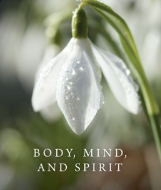 Body, Mind, and Spirit Daily Meditations Size & Fit Guide