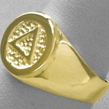 14k Gold Mens Ring with AA Symbol in a Wide Signet Style