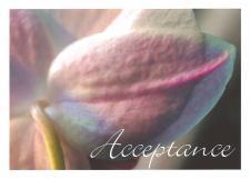 AcceptanceLauraleeGreetingCard.jpg