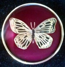 ButterflyBurgundy.jpg