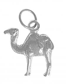 CamelAAPendant.jpg