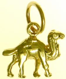 CamelGold526.jpg