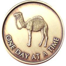 CamelSerenityMedallion.jpg