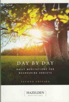 DayByDay2015
