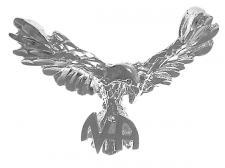 EagleNASymbol.jpg