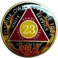 AA Fire Designer Medallion