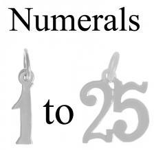 NumeralsSilverPendant.jpg