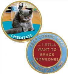 Yoga Cat Recovery Medallion