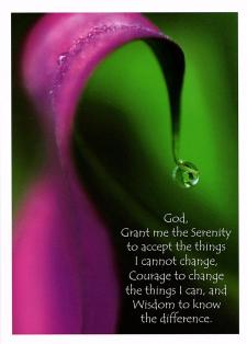 Through The Looking Glass Serenity Prayer Greeting Card