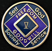 NA Purple Enamel Recovery Medallion