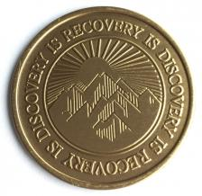 Recovery Is Discovery Bronze Medallion